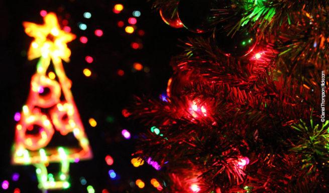 Ein Weihnachtsbaum ©Daniel Thompson|flickr.com